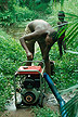 BEN93TX9_16 Man attends to petrol driven pump that irrigates womens garden project from swamp (bas-fonds); Blehouan-Sota, S.Benin. Copyright Tropix (V. and M. Birley)
